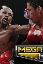 MEGA Fights