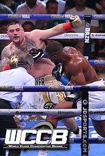 Caleb Plant knocks down Jose Uzcategui