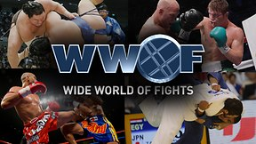 Wide World Of Fights