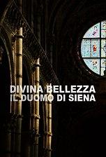 Divina Bellezza - Il Duomo di Siena